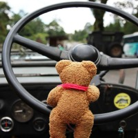 Better watch out, Teddy is driving!
